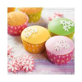 Preparado para Cupcakes 500gr Funcakes